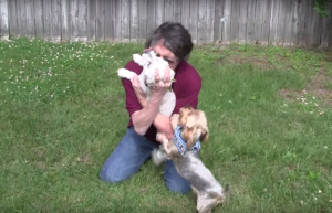 RHONDA and her dogs reunited!