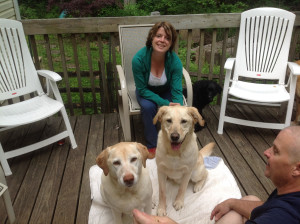 ANGEL and FENDER reunited with Amy!