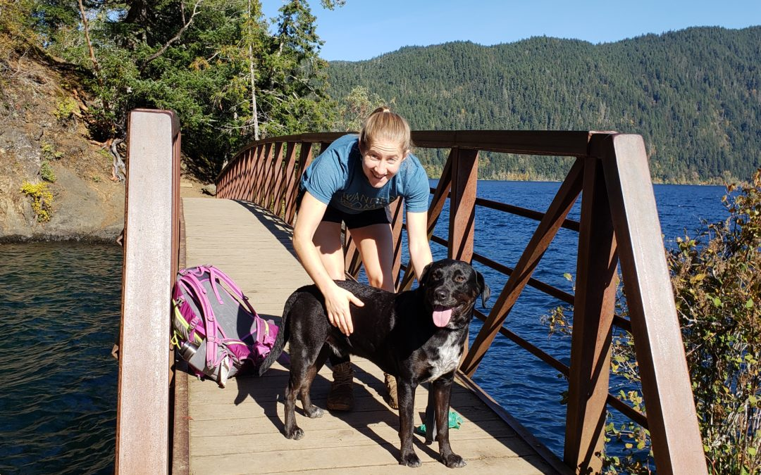 Bailey needs a foster in WA!
