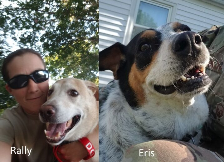 Eris and Rally found fosters!