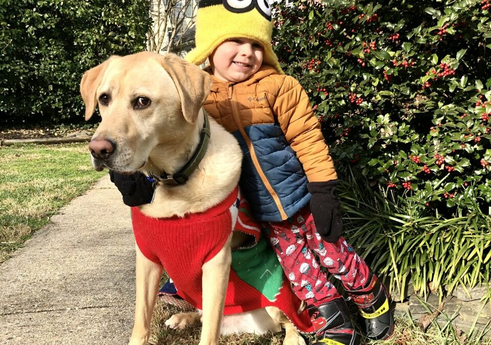 Boomer found a foster in NC!